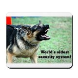 Oldest Security System Mousepad
