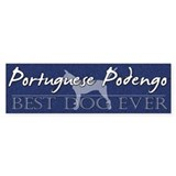 Best Dog Portuguese Podengo Bumper Sticker Smooth