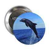 &quot;Leaping Dolphin&quot; Button