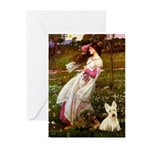 Windflowers / Scottie (w) Greeting Cards (Pk of 20