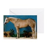 Palomino Greeting Cards (Pk of 10)