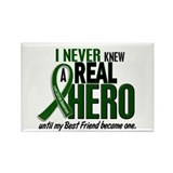 REAL HERO 2 Best Friend LiC Rectangle Magnet (10 p
