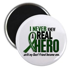 "REAL HERO 2 Best Friend LiC 2.25"" Magnet (10 pack)"