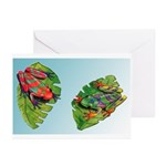 Leaf Frogs Greeting Cards (Pk of 10)