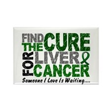 Find The Cure 1 LIVER CANCER Rectangle Magnet