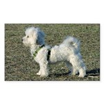 Proud Coton De Tulear Rectangle Sticker