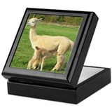 Alpaca Pride Designs Keepsake Box