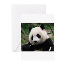 Cute Chengdu china Greeting Cards (Pk of 10)