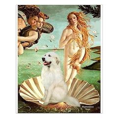 Venus / Great Pyrenees Posters