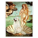 Venus / Great Pyrenees Small Poster