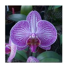 Purple Orchid Red Beard Tile Coaster