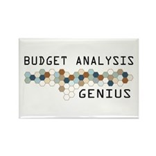 Budget Analysis Genius Rectangle Magnet
