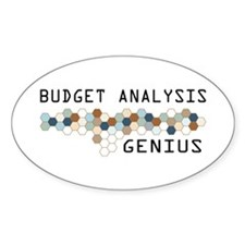 Budget Analysis Genius Oval Decal