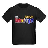 Junior Meteorologist T