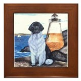 Newfoundland Lighthouse Dog L Framed Tile