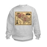 Washington DC (1862) Sweatshirt
