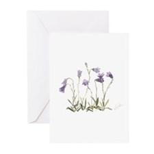 Harebell Greeting Cards (Pk of 10)