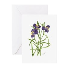 Pine Spider Wort Greeting Cards (Pk of 10)