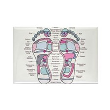 Soles Reflexology Foot Chart BIG LETTERS Magnets