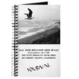 Gull Over Redwood Creek Beach Journal
