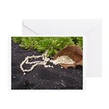 Cute Hawaiian romance Greeting Card