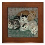 Kittens Framed Tile