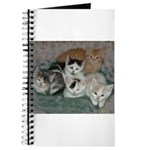 Kittens Journal