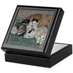 Kittens Keepsake Box