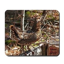 Strutting Spruce Grouse Mousepad