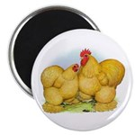 Buff Cochin Rooster and Hen Magnet