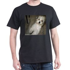 Cute Dogs and pet T-Shirt