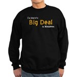 Scott Designs Big Deal Sweatshirt (dark)