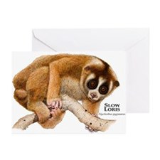Slow Loris Greeting Cards (Pk of 10)