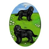NEWFOUNDLAND DOGS PARK Oval Ornament