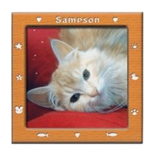 Sample --Customized Tile /Virtual Frame