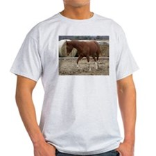 Western Rides signature shirt Socks T-Shirt