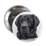 "Diesel, Black Lab 2.25"" Button (100 pack)"
