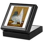 Indian Fantail Pigeon Keepsake Box