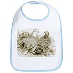 Frillback Pigeons Bib