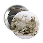 Frillback Pigeons Button