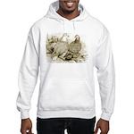 Frillback Pigeons Hooded Sweatshirt