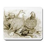 Frillback Pigeons Mousepad