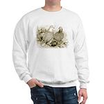 Frillback Pigeons Sweatshirt