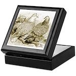 Frillback Pigeons Keepsake Box