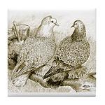 Frillback Pigeons Tile Coaster