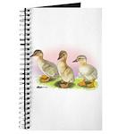 Buff Ducklings Journal