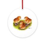 Red Leghorn Chicks Ornament (Round)