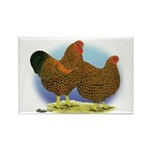 GL Wyandotte Rooster and Hen Rectangle Magnet (100