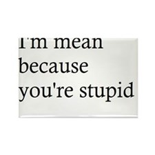 Im mean because youre stupid. Rectangle Magnet