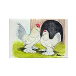 Porcelain d'Uccle Rooster and Rectangle Magnet (10